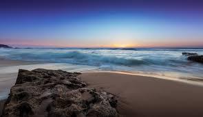 アカモク 海