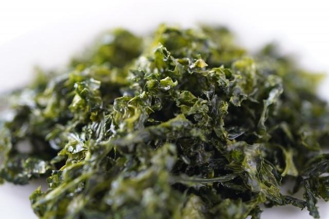 川に生息する海藻は生命力が強い